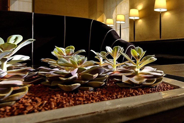 Common areas  art hotel novecento bologna