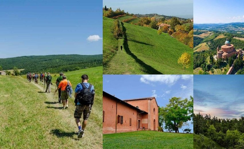 TREKKING ON BOLOGNA HILLS