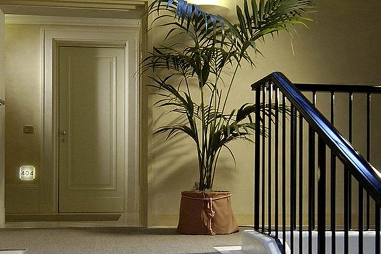 Interiors  art hotel novecento bologna